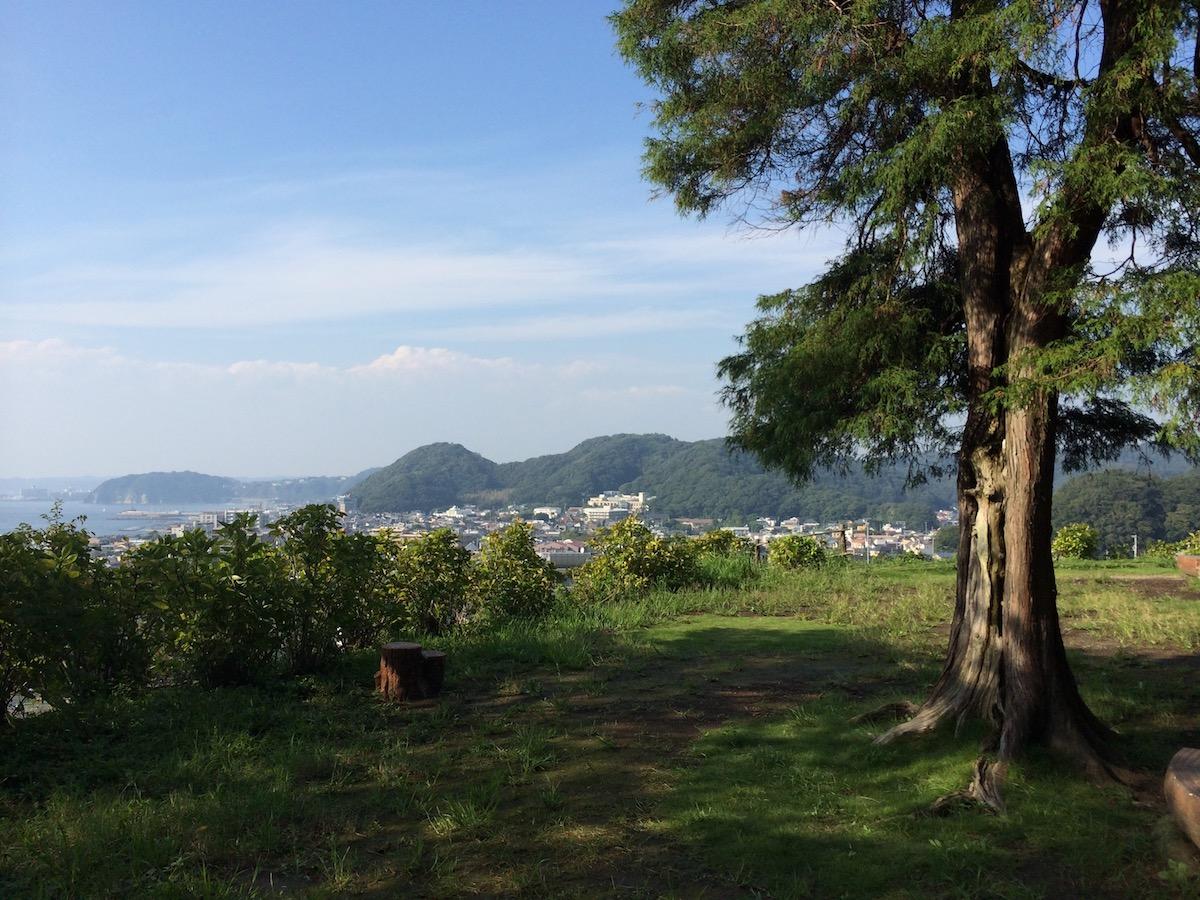 葉山の自然